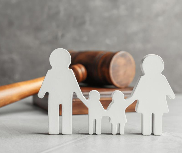 Seek-Family-Law-Services
